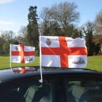 Auto karogi